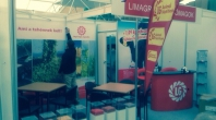 Exhibition Stand from Depository!